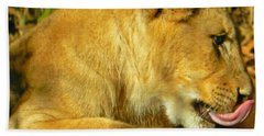Lion Cub - What A Yummy Snack Hand Towel by Emmy Marie Vickers