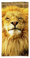 Hand Towel featuring the photograph Lion King 1 by Ayasha Loya