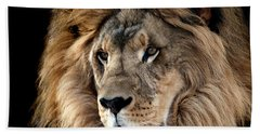 Lion King Of The Jungle 2 Hand Towel