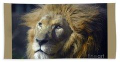 Lion Portrait Hand Towel