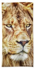 Lion-the King Of The Jungle Large Canvas Art, Canvas Print, Large Art, Large Wall Decor, Home Decor Bath Towel