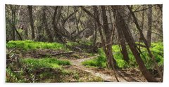 Lion Trail At Hassayampa Nature Reserve Hand Towel by Anne Rodkin