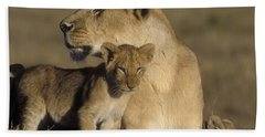 Lioness And Her Cub  Hand Towel