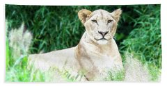 Lioness Hand Towel