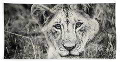 Lioness Portrait Bath Towel