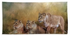 Lionesses Watching The Herd Bath Towel