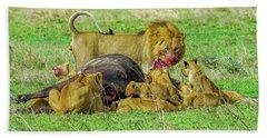 Lions With Cape Buffalo Kill Hand Towel