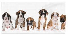Litter Of Boxer Puppies Hand Towel