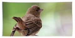 Little Bird Hand Towel