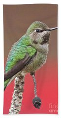 Little Hummer Hand Towel