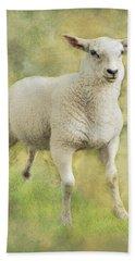 Little Lamb Hand Towel