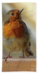 Little Robin Redbreast Bath Towel by Lynn Bolt