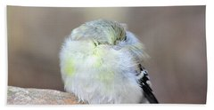 Little Sleeping Goldfinch Hand Towel