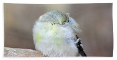 Little Sleeping Goldfinch Hand Towel