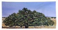 Live Oak Hand Towel by Christine Lathrop