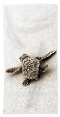 Turtle Photographs Hand Towels