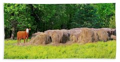 Lone Cow Guard, Smith Mountain Lake Hand Towel