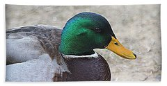 Hand Towel featuring the photograph Lone Mallard Duck by Kathy White