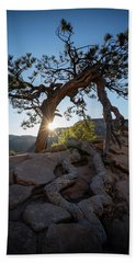 Lone Tree In Zion National Park Hand Towel