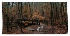 Hand Towel featuring the photograph Lonely Hound by Barbara Bowen