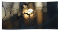 Lonely Tree Branch With Bokeh Love -georgia Hand Towel