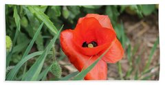 Lonesome Poppy Hand Towel