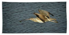 Long-billed Curlew In Flight Hand Towel