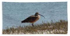 Long-billed Curlew Bath Towel by Karen Molenaar Terrell