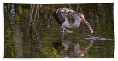 Long-billed Curlew - Male Hand Towel