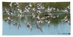 Hand Towel featuring the photograph Long-billed Dowitchers by Tam Ryan