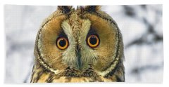 Long Eared Owl 3 Hand Towel