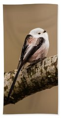 Long-tailed Tit On The Oak Branch Bath Towel