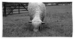 Longwool Sheep Grazing Bath Towel