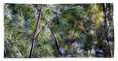 Looking Through The Pine Needles Hand Towel