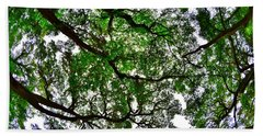 Looking Up The Oaks Hand Towel