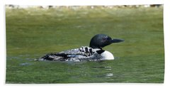 Loon In The Afternoon Sun Bath Towel