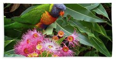 Lorikeet Hand Towel