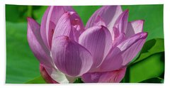 Bath Towel featuring the photograph Lotus Beauty--buxom Beauty I Dl0089 by Gerry Gantt