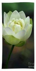 Lotus Blooming Hand Towel