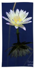 Lotus Reflection Hand Towel