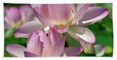 Hand Towel featuring the photograph Lotus--sisters I Dl0082 by Gerry Gantt