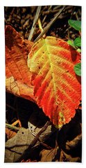 Hand Towel featuring the photograph Loud Leaf by Adria Trail