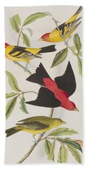 Louisiana Tanager Or Scarlet Tanager  Bath Towel