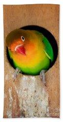 Love Bird Hand Towel by Sean Griffin