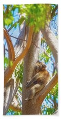 Bath Towel featuring the photograph Love My Tree, Yanchep National Park by Dave Catley