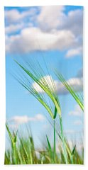 Hand Towel featuring the photograph Lovely Image Of Young Barley Against An Idyllic Blue Sky by Tom Gowanlock
