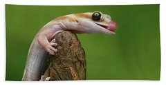 Bath Towel featuring the photograph Lovely Water - Velvet Gecko by Nikolyn McDonald