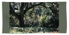 Low Country Series II Hand Towel by Suzanne Gaff