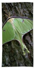 Bath Towel featuring the photograph Luna Moth by Marie Hicks