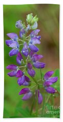 Lupine Hand Towel by Sean Griffin